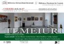 """Încă 3000 de cărți pentru Centrul Cultural Românesc """"Sf. Antim Ivireanul"""" din Parla, Spania"""